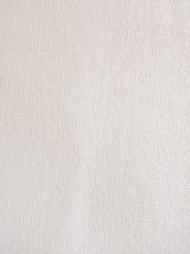 画像2: 晒木綿 (2)
