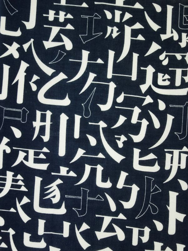 画像1: 藍捺染手ぬぐい 瞬 (1)